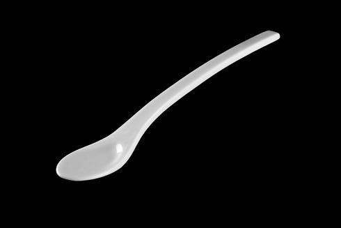 $26.00 Asian Spoon