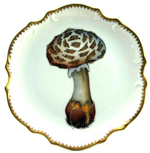 $294.00 Mushroom #3 Hors D\'Oeuvre Plate