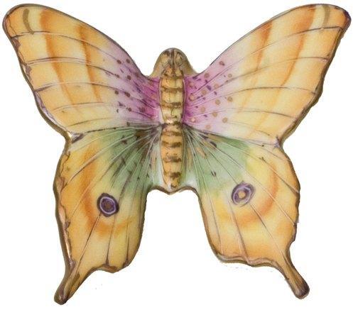 Butterfly # 7