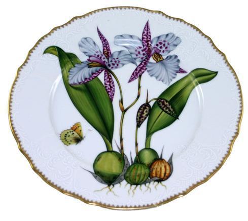 $500.00 Dinner Plate #2